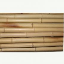 Bambusrohre, beste Qualität