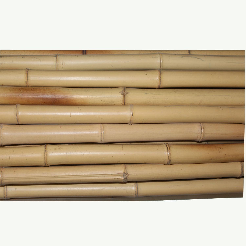 Rudolf schachtrupp kg bambusrohre beste qualit t - Bambusrohre deko ...